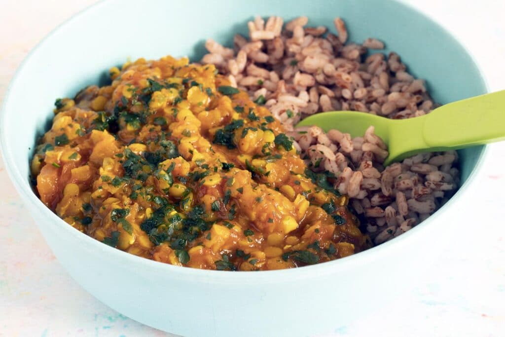 blue bowl with rice and red lentil dal