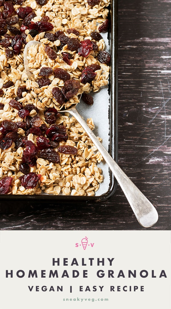 healthy homemade vegan granola with dried cranberries