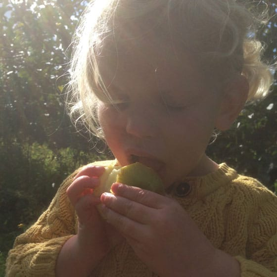 Eating an apple straight off the tree sneaky veg photo