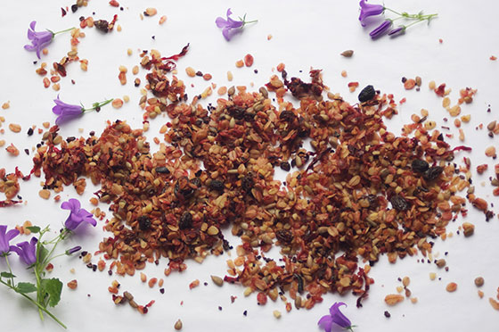 chocolate beetroot granola recipe by Sneaky Veg