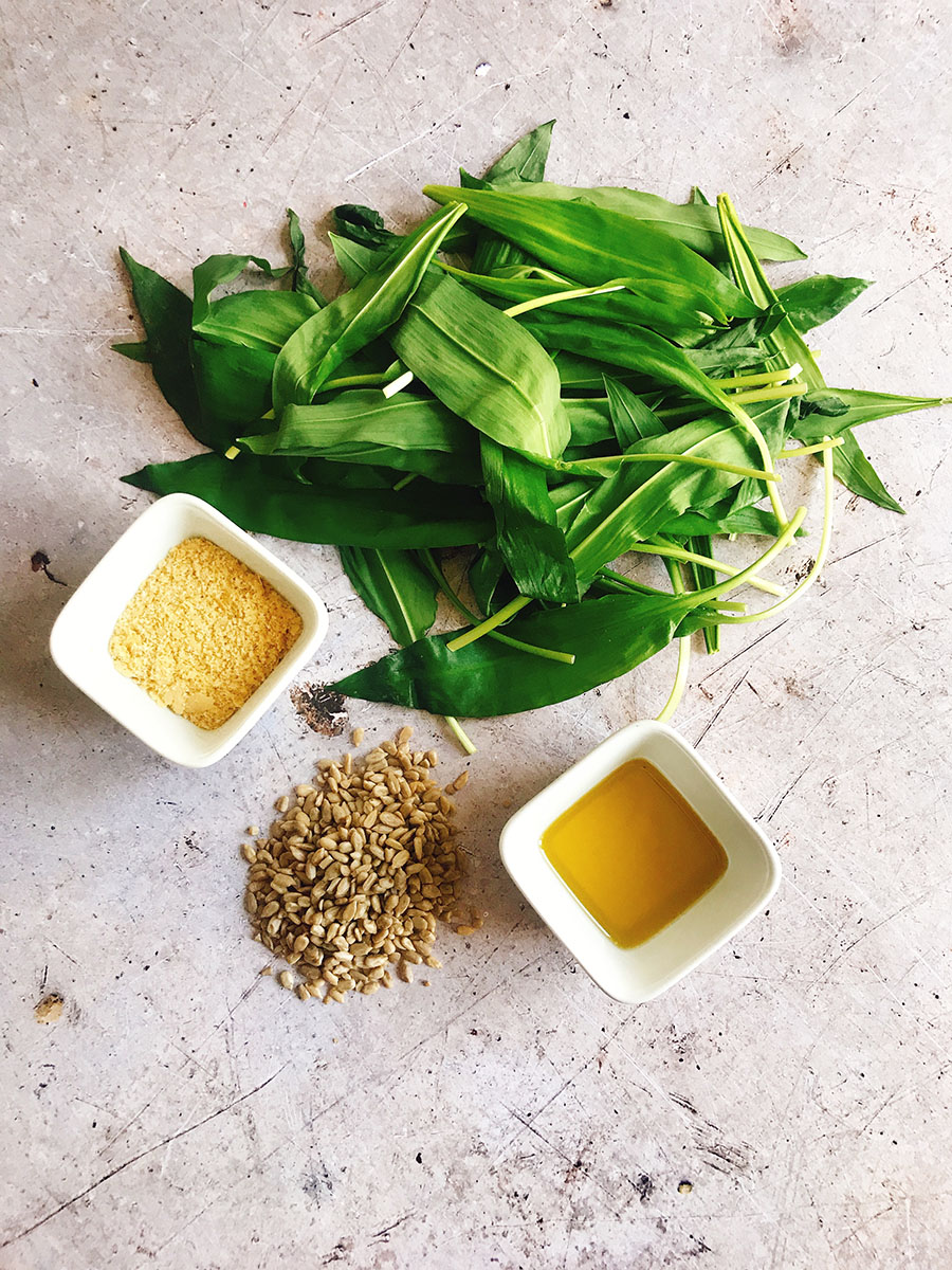 wild garlic pesto ingredients
