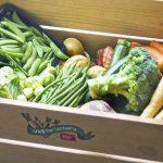 vegetables in Ella's Kitchen wooden box